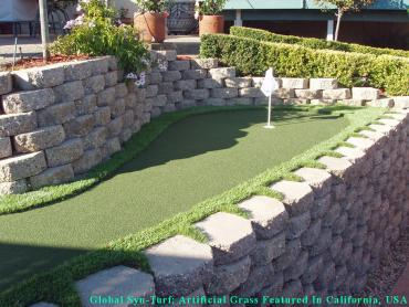 Synthetic Turf Bala Cynwyd, Pennsylvania Putting Green Carpet, Backyard Makeover artificial grass