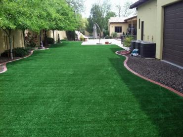 Synthetic Turf Chester, Pennsylvania Gardeners, Beautiful Backyards artificial grass