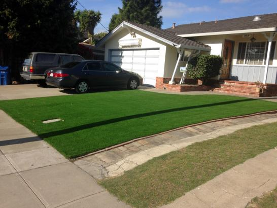 Artificial Grass Photos: Synthetic Turf Emerald Lakes, Pennsylvania Lawn And Garden, Landscaping Ideas For Front Yard