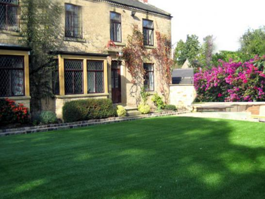 Artificial Grass Photos: Synthetic Turf Supplier Lykens, Pennsylvania Design Ideas, Landscaping Ideas For Front Yard