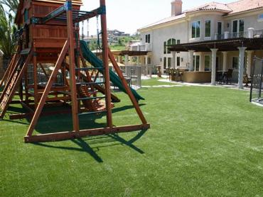 Artificial Grass Photos: Synthetic Turf Supplier Royersford, Pennsylvania Roof Top, Beautiful Backyards