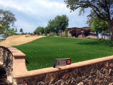 Artificial Grass Photos: Synthetic Turf Weissport, Pennsylvania Landscape Photos, Front Yard Landscaping