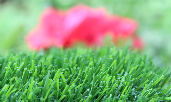 Artificial Grass Evergreen-80 Artificial Grass Philadelphia Pennsylvania